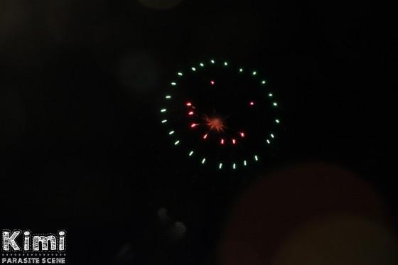 Anakawa Riverside Fireworks at Minami-Sunamachi (3)