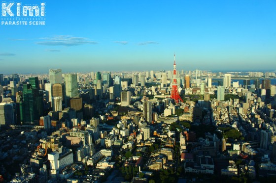Tokyo by day (1)