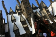 USJ - Harry Potter (3)